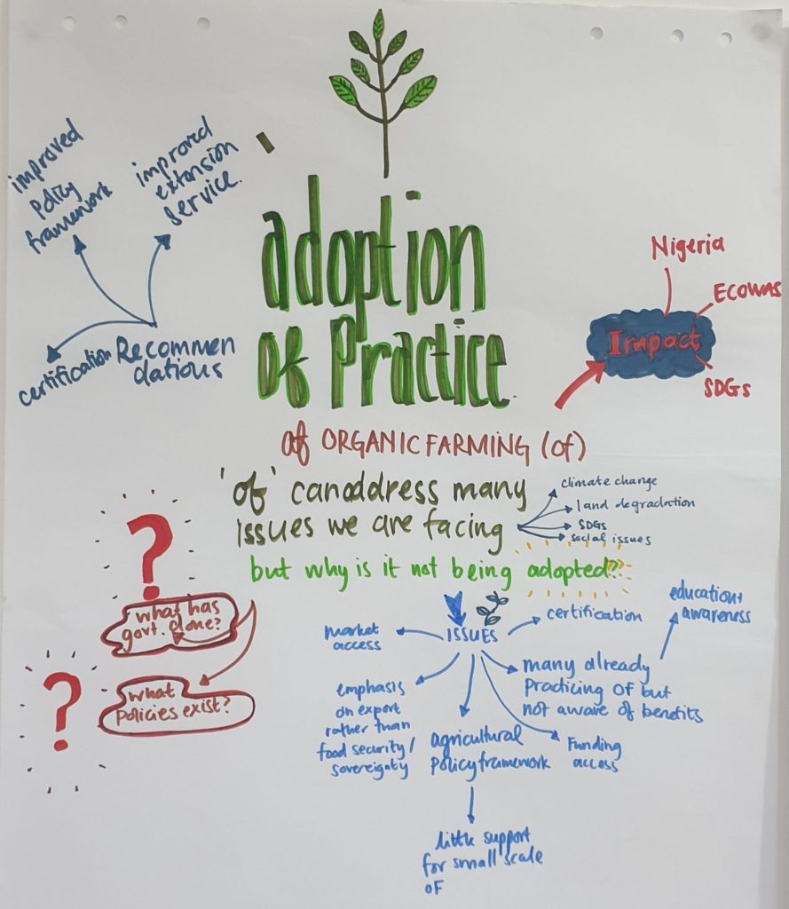 Adoption of practice OA