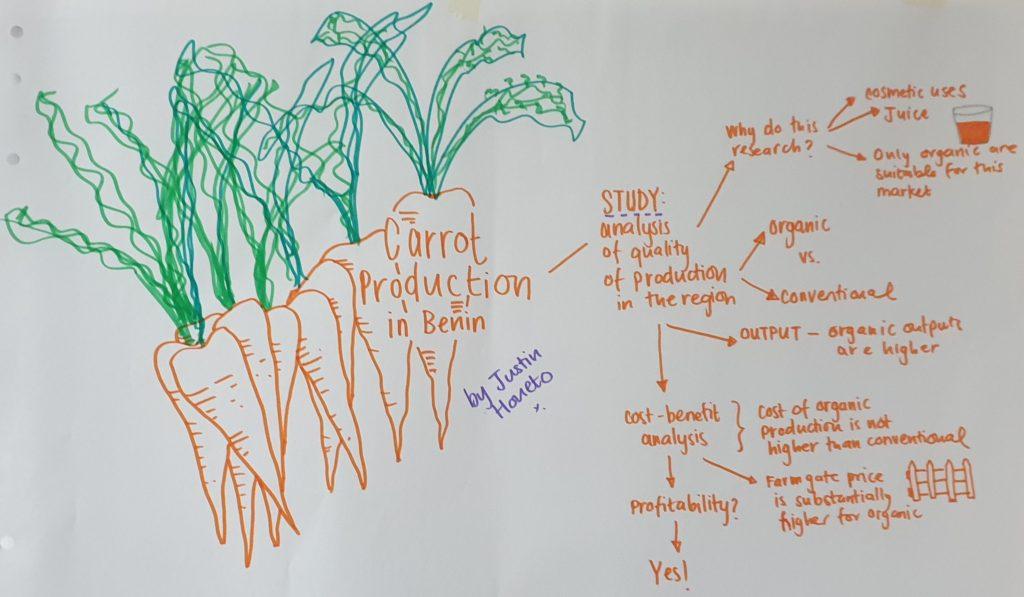 Case study Benin carrot production