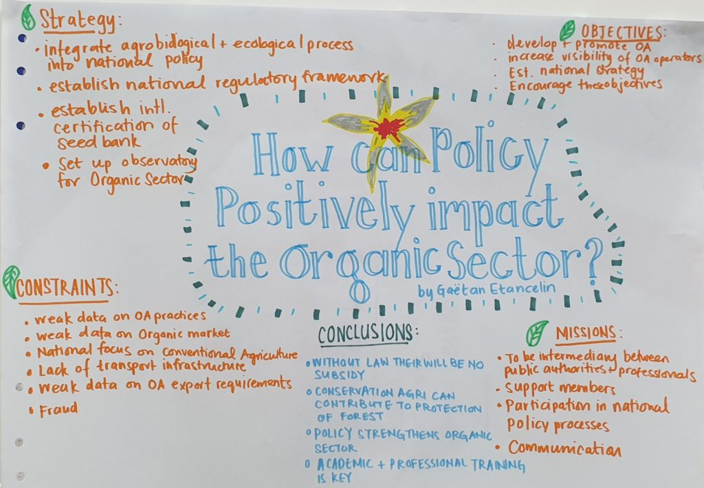 How can policies positively influence OA